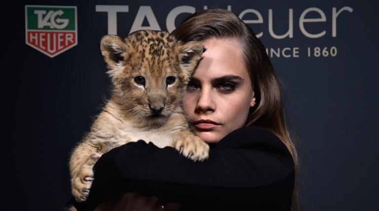 La actriz y modelo Cara Delevingne posa con un cachorro de león para la campaña de una subasta cuyos fondos fueron destinados a las organizaciones que velan por la seguridad de los leones en África. Palacio de Bellas Artes el 23 de enero de 2015 en Paris, Francia. (Foto de Pascal Le )